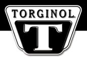 Torginol Polymer Color Flakes | Sheboygan Wisconsin